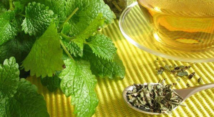 citromfű tea mellékhatásai