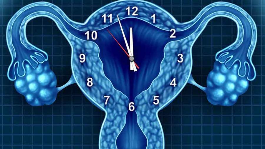 petefészekrák látható ultrahangon tagadod, hogy ez milyen hatással van a férfiakra