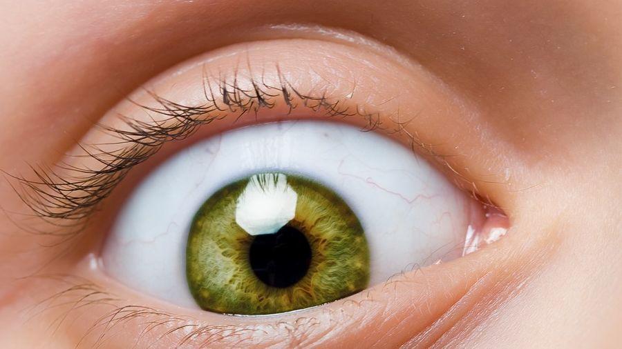 könyvek a szem betegségéről)