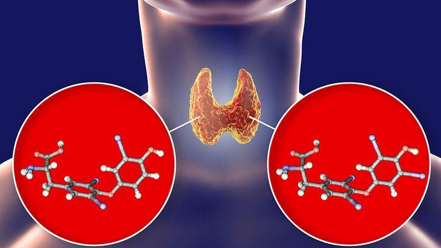 éget zsírmagot biztonságos hatékony fogyás tisztít